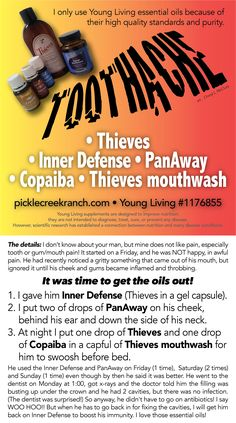 If you ever have a toothache, check this out! Especially if it comes down over the weekend and you can't get in to see the dentist yet! I am so thankful for Young Living essential oils, Thieves, PanAway, Copaiba and Inner Defense and Thieves mouthwash! If you want to purchase oils or supplements, visit my website and follow the links to essential oils. I will be happy to help and I can show you how to buy at a discount.  YL #1176855