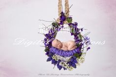 Wonderful Props - Lilac Spring Hanging Nest - Digital Backdrop - Photo Prop for Newborn Photography
