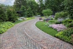 The Sweeping Driveway  The challenge: How to make the approach interesting and set the scene for what is to come.  Solution A: Create a park-like feel with a tapestry of plants and lawn that meets the paving at intervals along the way.