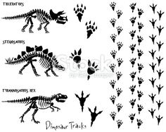 Dinosaur Skeleton & Footprints Royalty Free Stock Vector Art Illustration
