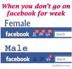 20 Best Facebook Images Facebook Quotes Facebook Humor Funny Stuff