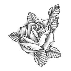 Disegni Tattoo - Rose
