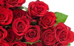 hoacomay75-huonggiang: Triệu triệu bông hồng...
