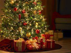 Veja ideias criativas para montar a sua arvore de natal sem gastar muito e onde comprar lindos modelos de árvore de natal decoradas para enfeitar sua casa!