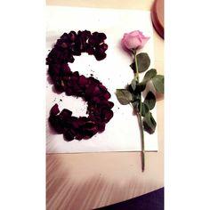 Alphabet Images, S Alphabet, Alphabet Design, S Love Images, Stylish Letters, Stylish Alphabets, Aesthetic Roses, Alphabet Wallpaper, Photo D Art