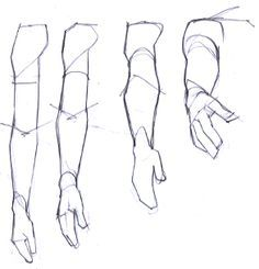 perspectiva braço