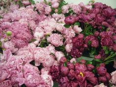 Perfect peonies in shades of purple