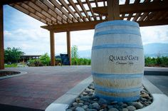 I went to Kelowna and took the opportunity to tour the Quails Gate Estate Winery (cuz it's wrong to be there in the summer and not do a wine tour. Quail, Wine Country, Life Is Good, Gate, Tours, Food, Meal, Eten, Quails