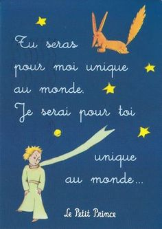 """ You will be the only one for me in the world; I will be the only one for you in the world"" Le Petit Prince"