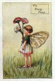 Daisy Flower Fairy Vintage Print by Cicely Mary Barker. first published in London by Blackie, 1923 in Flower Fairies of the Spring.