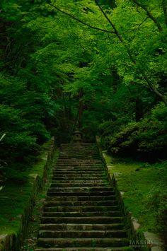Stone Lantern and Stone Steps Japan Countryside, Stone Lantern, Stairway To Heaven, Hiroshima, Stairways, Railroad Tracks, Stepping Stones, Lanterns, Sidewalk