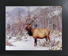 Big Bull Elk Antler Mountain Wildlife Animal Wall Decor C... https://www.amazon.com/dp/B01N5G498P/ref=cm_sw_r_pi_dp_x_ZzeMybQRQ7G4H