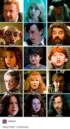 Harry Potter in a nut shell #harrypotter
