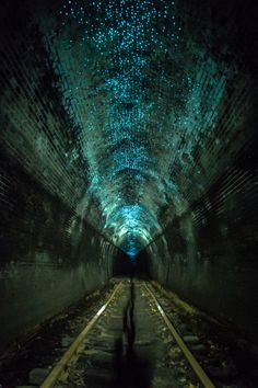 Glow Worms - Helensburgh Metropolitan Tunnel 1st. An abandoned railway tunnel in Australia is home to thousands of glow worms. © via Flickr