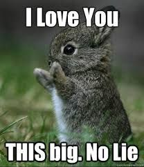 Love you http://ibeebz.com