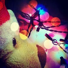 Tux e as luzes de natal