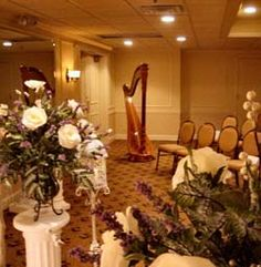 Northwest Indiana Harpist Providing Music For Wedding Ceremonies Receptions And Other Events At Banquets St