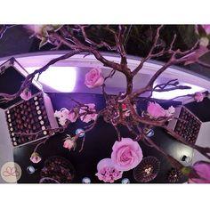 R D {CandyBar de bombones y flores} #weddingdecoration #boda #decoracion #vintage #love #amor #photooftheday #flores #flowers #crafts #decolores #caracas #novia #bride #wishtree #gopro #venezuela #instabride #hechoamano #creativo #instalove #instagood #instamood #centrosdemesa #centerpieces #sign #chalkboard #pizarra #message #Padgram