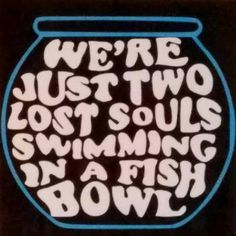 Music Lovers Pink Floyd Wooden Sign Were Just Two Lost Souls Swimming in a Fish Bowl Wish You Were Here Song Lyrics Pink Floyd Fans Gift - Love Shirts - Ideas of Love Shirts - - Music Lyrics, Music Quotes, Rock Lyric Quotes, Song Lyrics Rock, Song Quotes, Vintage Glam, Pink Floyd Lyrics, Pink Floyd Quotes, Arte Pink Floyd