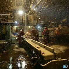 Life on the being sea. Deadliest catch