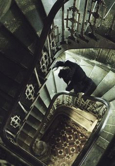 Sherlock descending the stairs at Lauriston Gardens in A Study In Pink