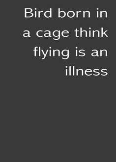 """""""Bird born in a cage think flying is an illness"""""""