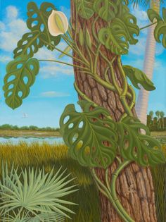 2nd panel of an Everglades themed triptych
