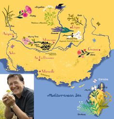 Provençal wildflower map