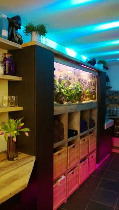 Fish tank with colour changing led lighting, relaxation area in Samuel David Hair Salon #hair #relaxation #fishtank #sdhairdressing #bristol