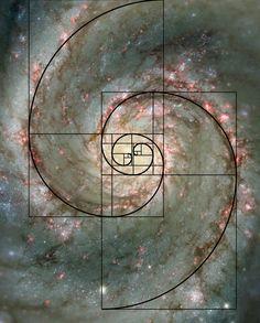 Spiral Galaxy and the Amazing Fibonacci Number (https://en.wikipedia.org/wiki/Fibonacci_number). More