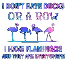 Flamingo Gifts, Flamingo Decor, Pink Flamingos, Great Quotes, Funny Quotes, I Believe In Pink, Pink Bird, My Spirit Animal, Pretty In Pink