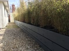 Raised beds built from 3.9 metre scaffold boards then painted with barn paint. Garden Inspiration, Garden Ideas, Scaffold Boards, Courtyard Ideas, Scaffolding, House Front, Raised Beds, Garden Design, Sidewalk