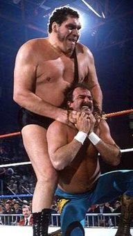Andre the Giant and Jake the snake Roberts.