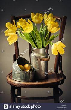 Kitchen Art, Still Life Photography, Armenia, Tulips, Watercolor Art, Planter Pots, Pastel, Wallpaper, Yellow