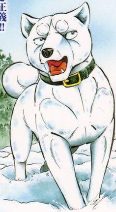 Shirocolour Shiro, Scooby Doo, Disney Characters, Fictional Characters, Weed, Silver, Anime, Sleeves, Marijuana Plants