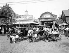 Premium Thick-Wrap Canvas Wall Art Print entitled The goat carriages at Coney Island, Brooklyn, New York, 1904 Coney Island, Brooklyn New York, New York City, Vintage Photographs, Vintage Photos, Vintage Stuff, Vintage Vibes, Vintage Postcards, Vintage Ads