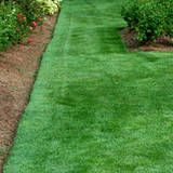 garden care schedule Lawn fertilizer s - gardencare Garden Care, Front Yard Landscaping, Backyard Landscaping, Landscaping Ideas, Sloped Backyard, Lawn Fertilizer Schedule, Grass Fertilizer, Lawn Care Tips, Lush Lawn