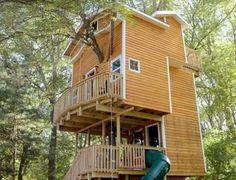 Avô americano constrói casa na árvore de três andares para netos