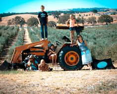 life on an olive farm - Google Search