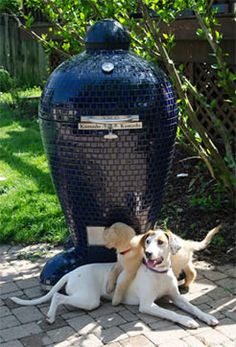 The kamado, ceramic, egg grill, smoker, and oven is a fast growing category with more and more choices every year. Here are reviews and ratings of them all.