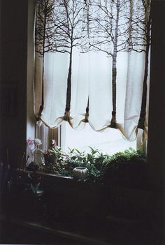 Love...Love...Love this! Tree curtain idea!