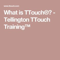What is TTouch®? - Tellington TTouch Training™