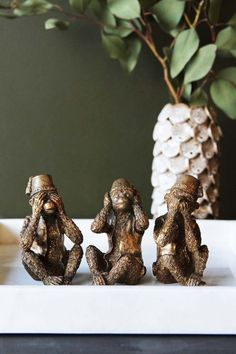 Search results for: 'home accessories display three wise monkey ornaments antique bronze' Quirky Gifts, Unusual Gifts, Decorative Accessories, Decorative Items, Accessories Display, Interior Accessories, Monkey Decorations, Three Wise Monkeys, Rockett St George