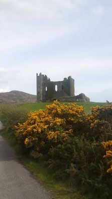 caservihen-ringofquery-irlanda-castelo Guinness, Dublin, Monument Valley, Places, Nature, Travel, Castle, Ireland, Naturaleza