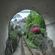 "The Funicular in Bergen, Norway takes you up to view the whole harbor and the ""Seven Sisters"", the steep hills around the city."