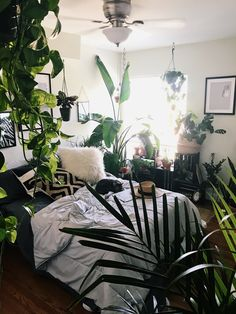 Who else has a plant obsession?? I sure do. Can't get enough. I'll only add more.