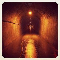 根子トンネル。入口から出口は見えない。こだまが神秘的! Photo by ishi_zerodate • Instagram