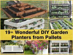 19 Wonderful DIY Garden Planters From Pallets...http://homestead-and-survival.com/19-wonderful-diy-garden-planters-from-pallets/