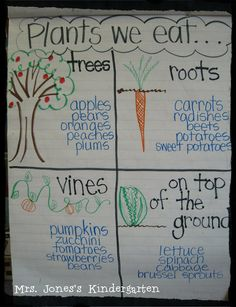 Plants we eat anchor chart or pocket chart! This would be a great visual for our preschool kiddos but I would use realistic visuals for each one.