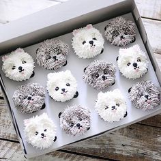 "SMART SCHOOL HOUSE on Instagram: ""These PUPcakes are adorable! Double tap on your favorite one . . . : @ivenoven #cupcakes #puppies #pup #bhgfood #shitzu #maltese…"""